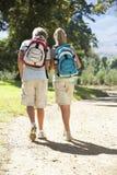 Pares adolescentes que caminan a través del campo visto de la parte posterior Fotos de archivo