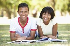 Pares adolescentes que estudian en parque Fotografía de archivo libre de regalías