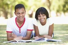 Pares adolescentes que estudian en parque Foto de archivo