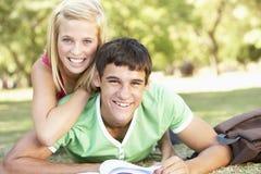 Pares adolescentes que estudian junto en parque Imagen de archivo libre de regalías