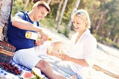 Pares adultos que tienen comida campestre en la playa Fotografía de archivo libre de regalías