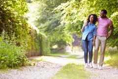 Pares afroamericanos jovenes que caminan en campo