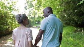 Pares afroamericanos maduros que caminan en campo almacen de metraje de vídeo