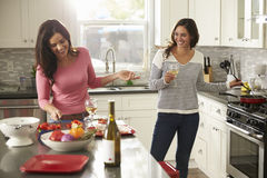 Pares alegres fêmeas que preparam a refeição junto e que bebem o vinho Foto de Stock