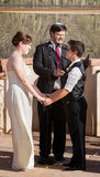 Pares alegres que casam-se Fotografia de Stock