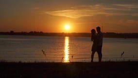 Pares apaixonado que guardam-se na praia no por do sol vídeos de arquivo
