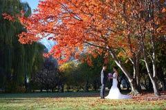 Pares asiáticos de la boda en imágenes de la naturaleza Foto de archivo
