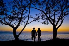 Pares bajo el árbol en la puesta del sol Foto de archivo libre de regalías