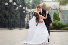 Pares bonitos do casamento Imagem de Stock Royalty Free