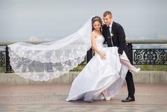 Pares bonitos do casamento Fotografia de Stock Royalty Free