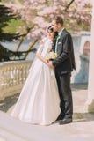 Pares bonitos do recém-casado que guardam-se no terraço no jardim ensolarado Fotos de Stock