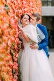 Pares bonitos elegantes do casamento, noivos que levantam no parque perto da parede com a planta vermelha do rastejamento Imagem de Stock
