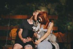 Pares bonitos junto com o cão em um balanço imagens de stock