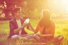 Pares cariñosos de adolescentes Comida campestre Imagen de archivo libre de regalías