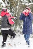Pares cariñosos en un paseo del invierno Fotografía de archivo