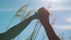 Pares cariñosos jovenes que llevan a cabo las manos contra el sol metrajes
