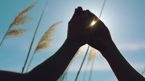 Pares cariñosos jovenes que llevan a cabo las manos contra el sol almacen de metraje de vídeo