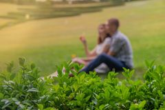 Pares cariñosos que descansan en el parque en sensaciones románticas imagenes de archivo