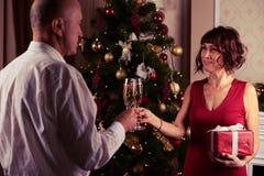 Pares cariñosos que tintinean sus flautas del champán antes de exchangi Fotografía de archivo libre de regalías