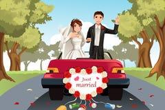 Pares casados stock de ilustración
