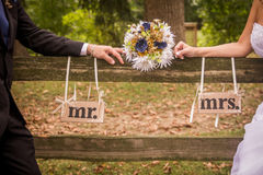Pares casados Imagem de Stock Royalty Free