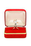 Pares casados miniatura en rectángulo rojo del anillo Imagenes de archivo