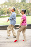 Pares chineses sênior que fazem o qui da TAI no parque Fotografia de Stock