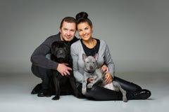 Pares com dois cães Imagem de Stock Royalty Free