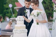 Pares con el pastel de bodas Fotografía de archivo libre de regalías