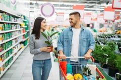 Pares con la flor casera de compra del carro en supermercado foto de archivo