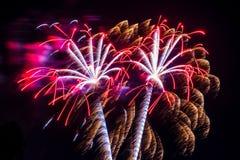 Pares da celebração dos fogos-de-artifício do fogo de artifício de white_ vermelho do ouro Imagem de Stock