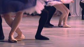 Pares da dança do bailado video estoque