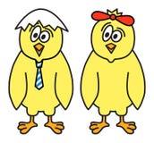 Pares das galinhas Imagem de Stock