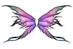Pares de alas Imágenes de archivo libres de regalías