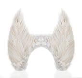 Pares de alas hechas de las plumas blancas Imagenes de archivo
