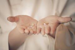 Pares de alianças de casamento Imagem de Stock Royalty Free