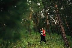 Pares de amor que caminan en el bosque conífero fotografía de archivo