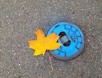 Pares de Autumnly fotos de archivo