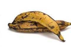 Pares de banana-da-terra Fotografia de Stock