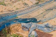 Pares de blue-jeans desvanecido que coloca na sujeira imagens de stock