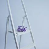 Pares de botines violetas Imágenes de archivo libres de regalías