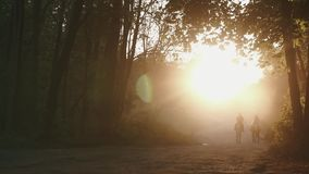 Pares de cavaleiros homem e mulher que viajam a cavalo através de uma floresta enevoada misteriosa Heidelberg do outono, Alemanha video estoque