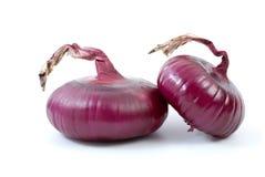 Pares de cebolas roxas Fotografia de Stock