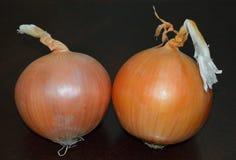 Pares de cebollas Foto de archivo