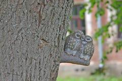 Pares de cerámica de búhos Fotografía de archivo