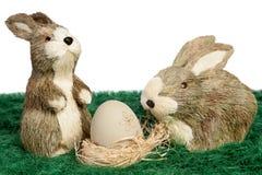 Pares de coelhinhos da Páscoa bonitos Imagens de Stock Royalty Free