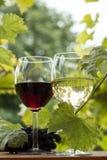 Pares de copas y manojo de uvas Foto de archivo libre de regalías