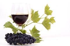 Pares de copas y manojo de uvas Imagen de archivo
