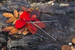 Pares de corações vermelhos de veludo em varas Imagem de Stock Royalty Free
