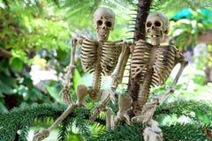 Pares de esqueletos debajo de los árboles de pino Imagen de archivo